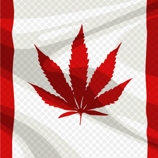 Canada weed flag in pop art style